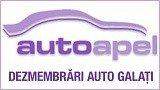 Autoapel