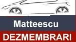 Dezmembrari Mateescu
