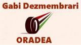 Gabi Dezmembrari Oradea