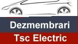 Tsc Electric